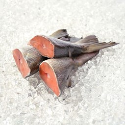 Obrázek Divoký losos kisutch- coho ocasní části 1000 g