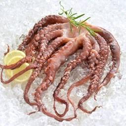 Obrázek Chapadla z chobotnice 1000g
