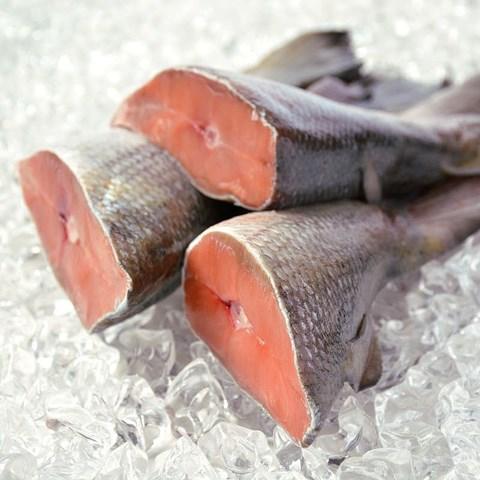 Obrázek z  Losos nerka ocasní část 1 kg