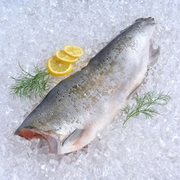 Obrázek Divoký losos coho půlený - 750 g